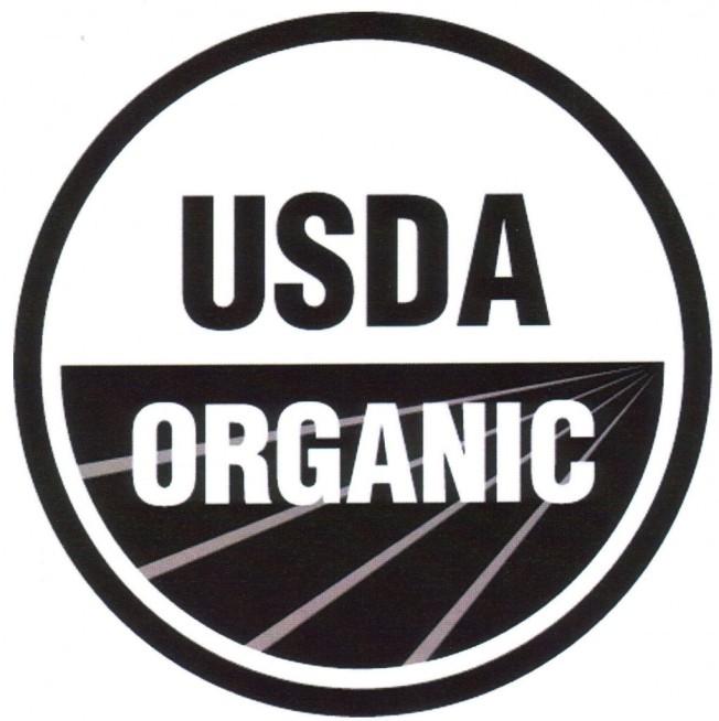 Organic_logo-1020x1024